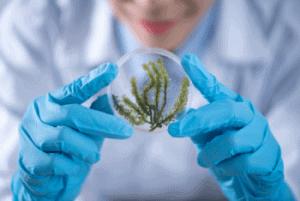 2019 Biology Major Scholarships